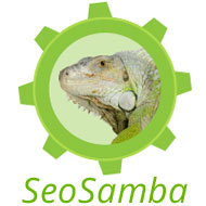 Multi-sites marketing specialist SeoSamba.com releases new website